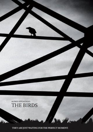 Jennifer Fischer - The Birds