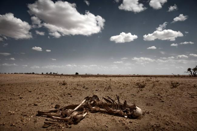 Stefano de Luigi aus Italien erarbeitet Foto-Essays über verschiedene Länder Afrikas. Als nächstes wird er über den Sudan, Chad und Darfur berichten und sowohl die tragischen als auch die schönen Momente des Lebens dort dokumentieren.