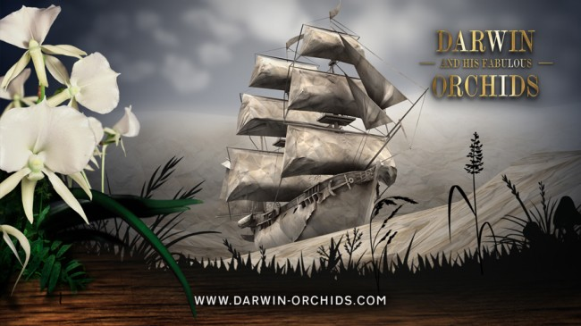 Foto/Film   Projekt: Darwin