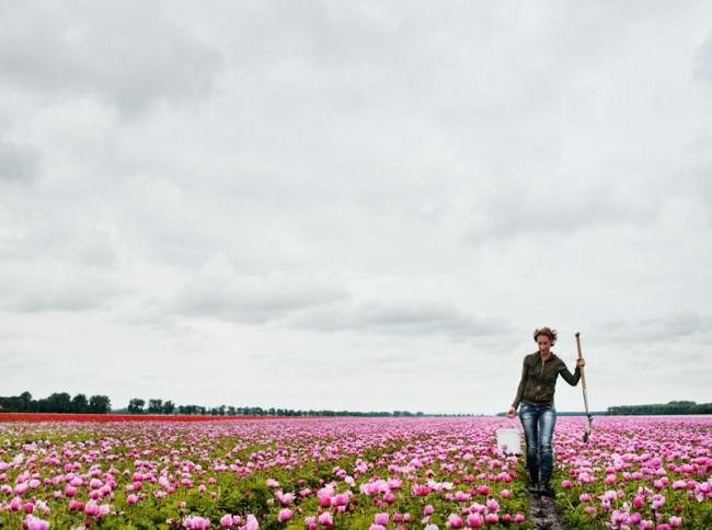 Eine der Designerinnen bei der Feldforschung in Noordoostpolder © Paul Scala