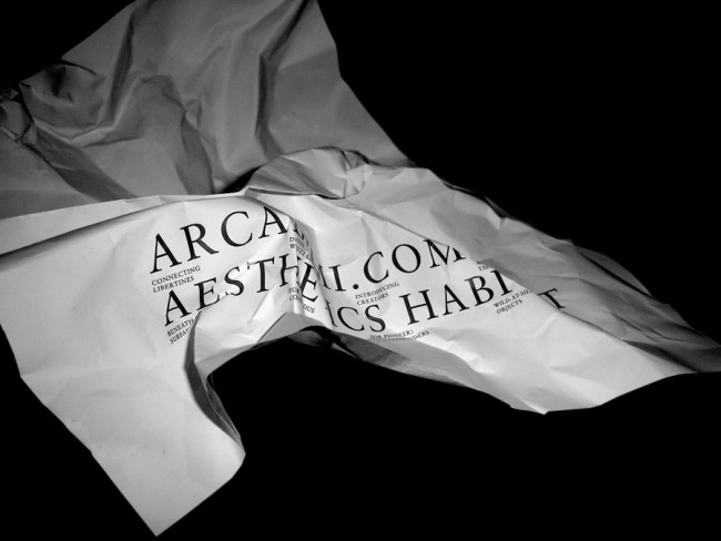 ARCADEMI – Aesthetics Habitat, Poster, 2010