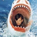 content_size_MartinParr_shark