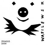 content_size_pigasus_wasilewski