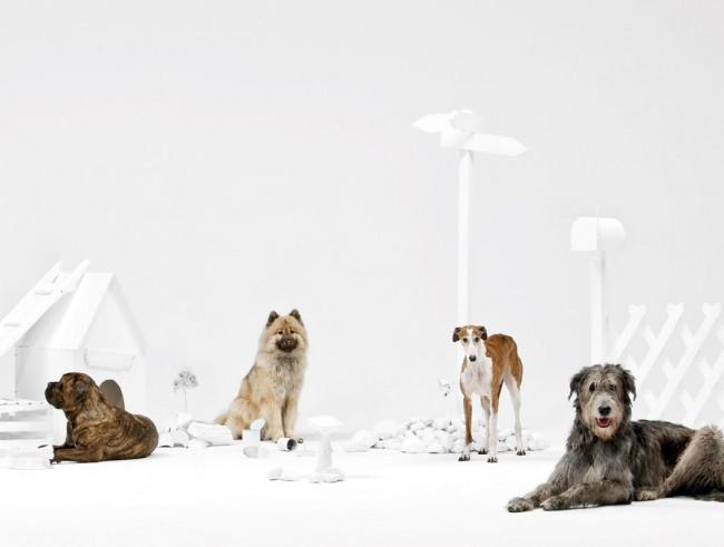 HUNDERTACHTZIGGRAD – Hundeschule, Szenographie, 2010