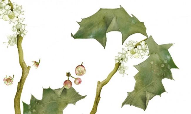 Jahreshoroskop. Erschienen in der Brigitte, Heft 1 | © Bianca Classen