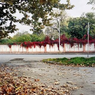 Aus dem Buch »Ushhorod« »Leaves«   © Julia Smirnova