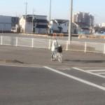content_size_Jens_Liebchen__untitled__from_Tsukuba-Narita_20110313__B