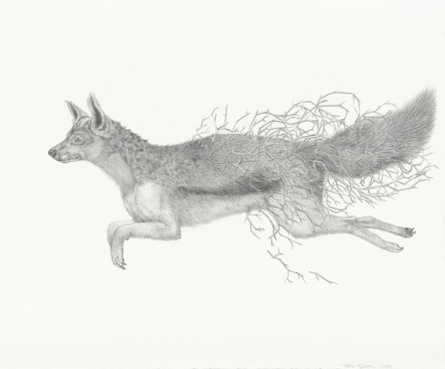 One out of hand equals one in a bush, Graphite on paper, 13 1/2 x 11 1/2 inches, 2009