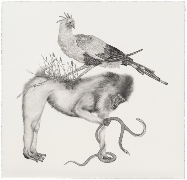 Double Trouble, Graphite on paper, 25 x 26 inches, 2008
