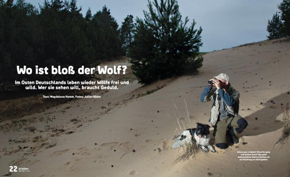 Ein Artikel zur Wolfsuche in der Rubrik »Erleben«