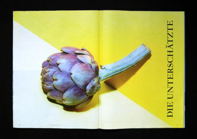 Artischocke, für DAS MAGAZIN, 2011
