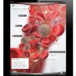 content_size_iPad_Human_Touch