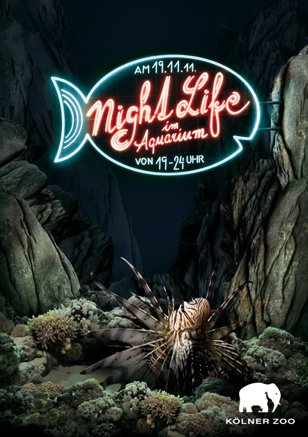 Bild Night Life Aquarium