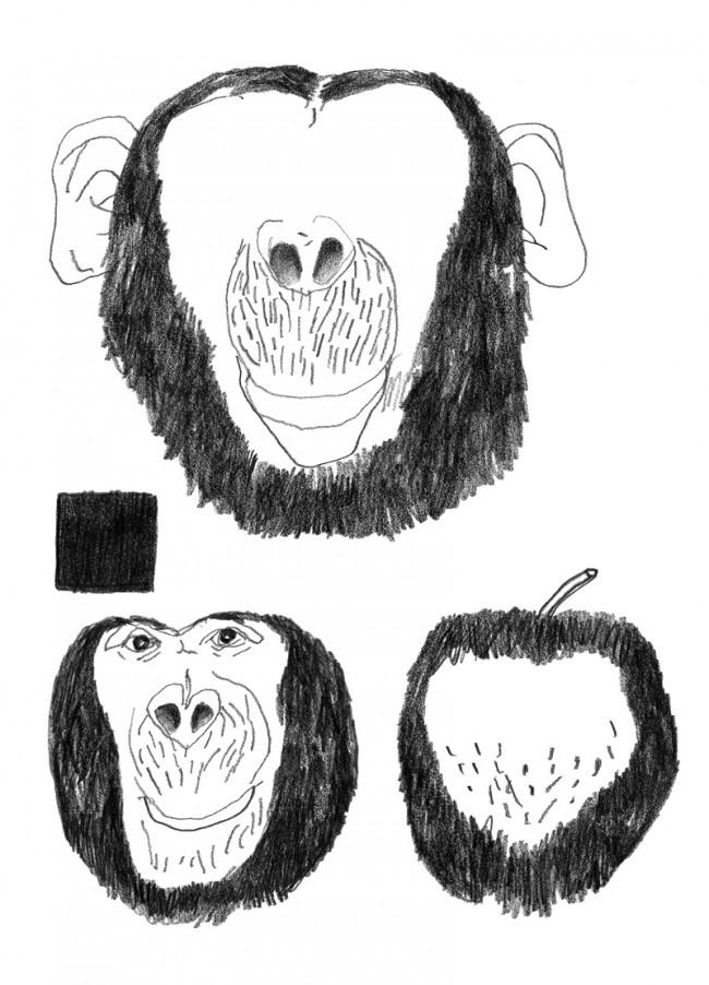 APPLEAPE / Illustration