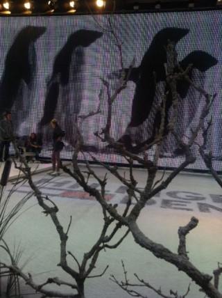 Bei Tommy Hilfiger ziehen Schlittschuhläufer ihre Bahnen und Pinguine über die Leinwand