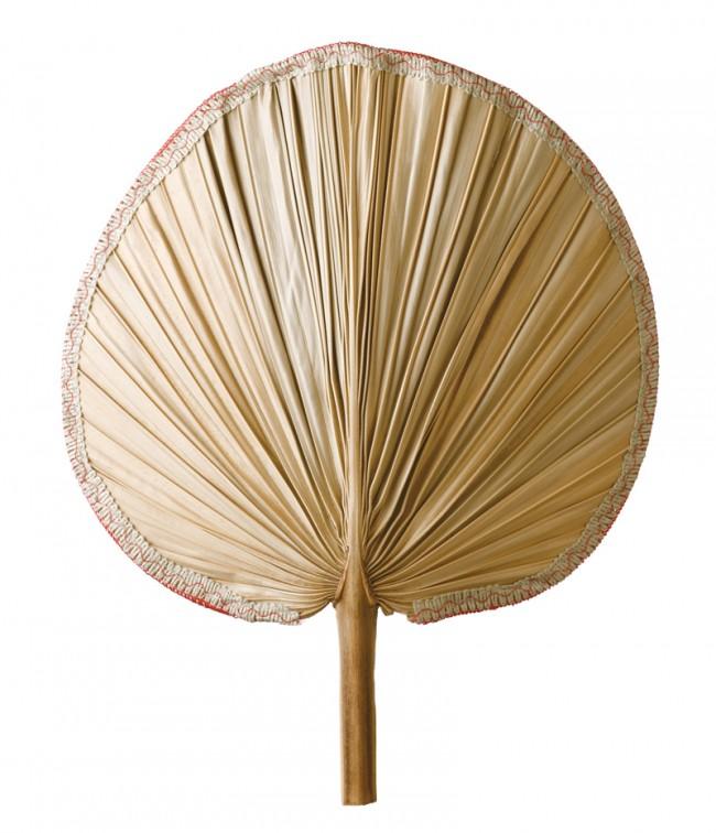 Der Palmblattfächer