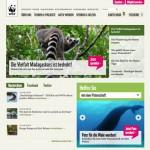content_size_KR_120214_WWF_Teaser