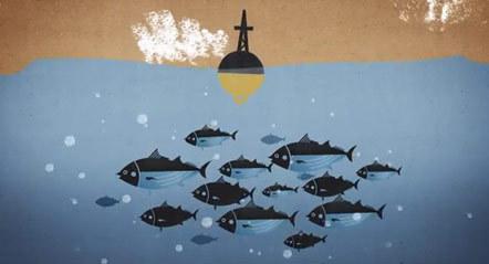 Bild Followfish guter Fang Film