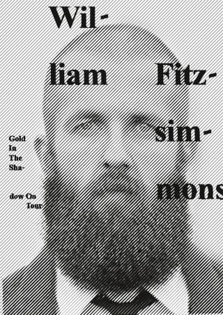 William Fitzsimmons – Gold In The Shadow Tour - Zwölf - Stefan Guzy