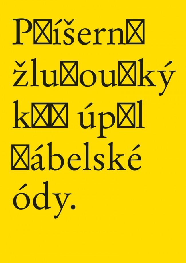 Durch seine Diplomarbeit wurde Radek Sidun zum Experten für diakritische Zeichen. Um dieses Thema herum bietet er inzwischen eine professionelle Dienstleistung an
