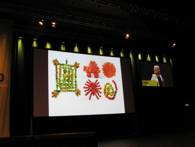 The Art of Gardening von Morag Myerscough