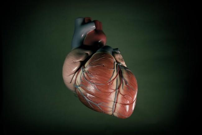 Unicato-Herz