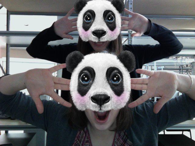 The Panda Show, webcam application,  http://pinar-viola.com/the_panda_show.php