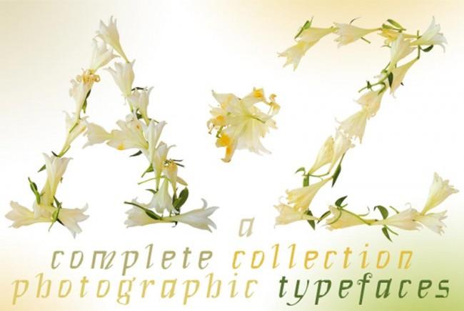 KR_120816_Flowertypefaces_T0000_00-1