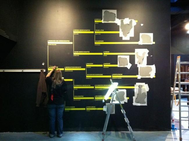 Arbeit an den Grafiken im Darwineum