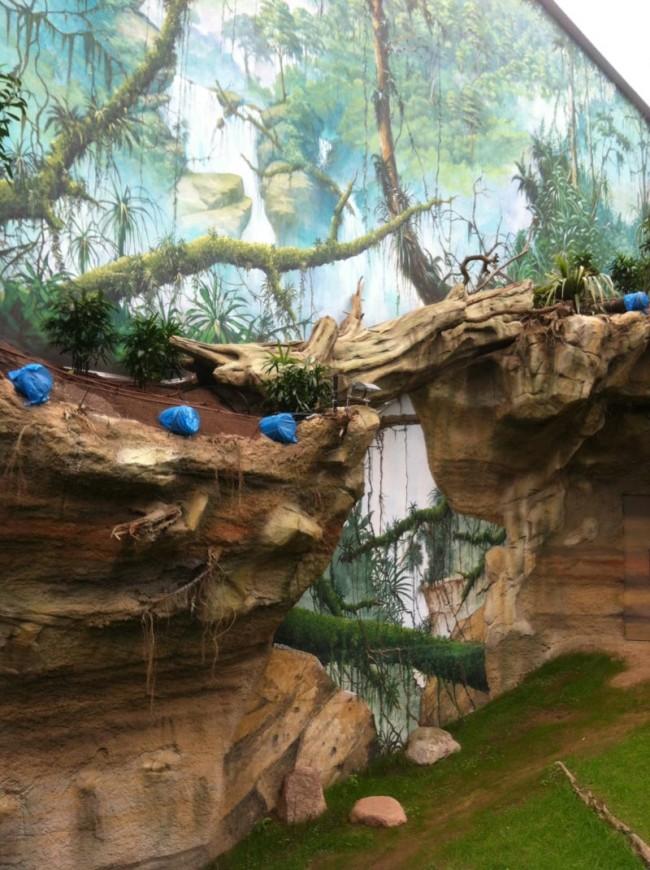 Natur, künstlich nachempfunden im Tropenhaus, in das die Gorillas und Orang-Utans einziehen