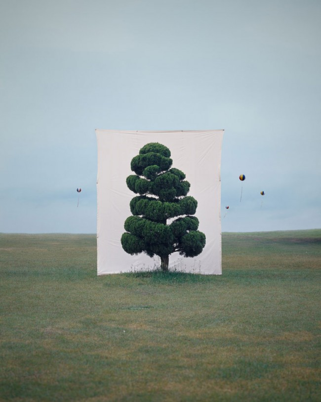 Myoung Ho Lee: Tree #2, 2006