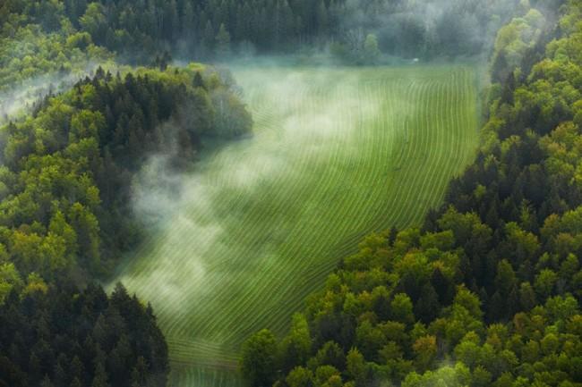 © F. Bilger Photodesign, www.f1online.de