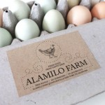 content_size_KR_121015_Lotie_carton-and-eggs-2