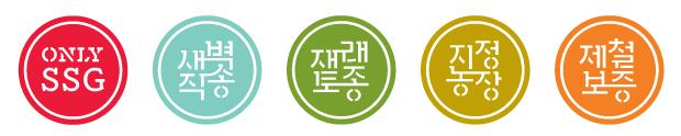 KR_121121_SSG-Icons