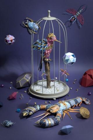 CABINET DE CURIOSITÉS (2012): Personal project