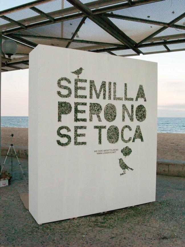 Exhibition Design for Semilla pero no se toca