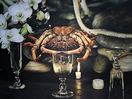 Vera Mercer | Spider Crab, Paris (2013) | Available for Sale | Artsy