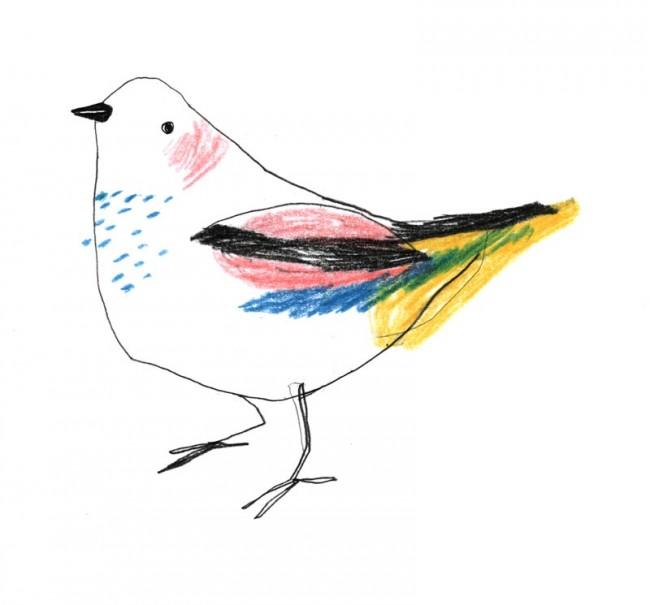 »Bird« Bleistift, Buntsift