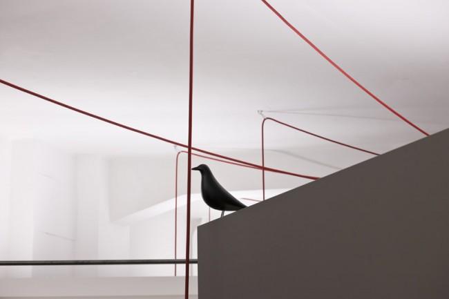 Die Vögel sind überall im places verteilt, Foto: punct object
