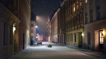 Bild Knut thjnk