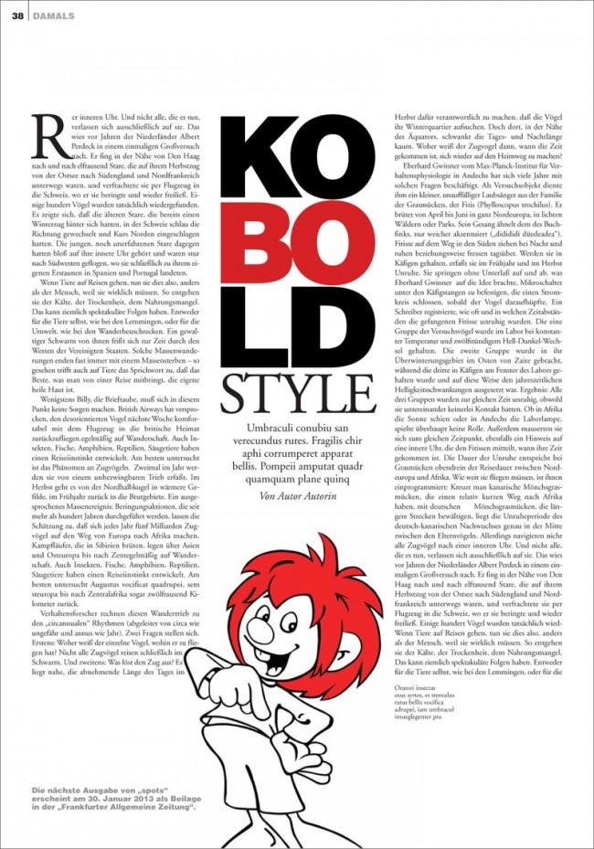 KR_130117_FAZ_Magazin_Damals