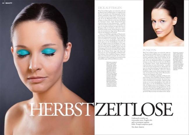 KR_130117_FAZ_Magazin_Herbst