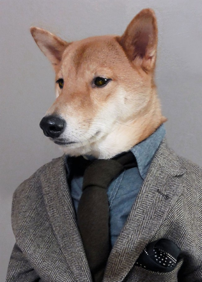 http://mensweardog.tumblr.com/
