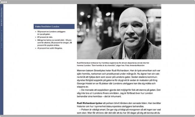 Papperstidning, Website
