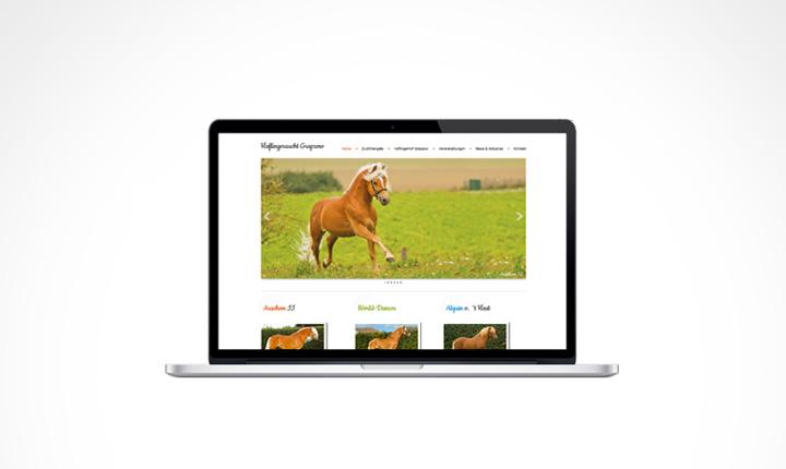 grasgruen-screendesign-haflinger