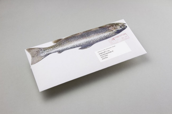 KR_130606_Fischumschlag_05