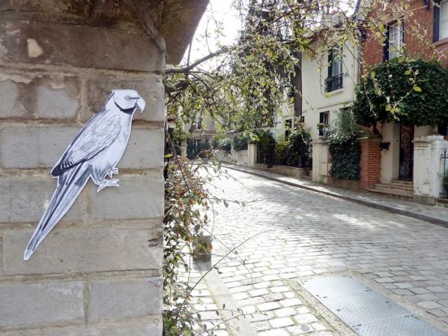 © Amelange, aus der Serie Wilde Tiere in Paris: Perroquet (Papagei)