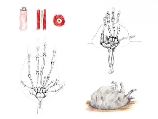 Herbarium Pulpa - Grauer Klumpgrätling