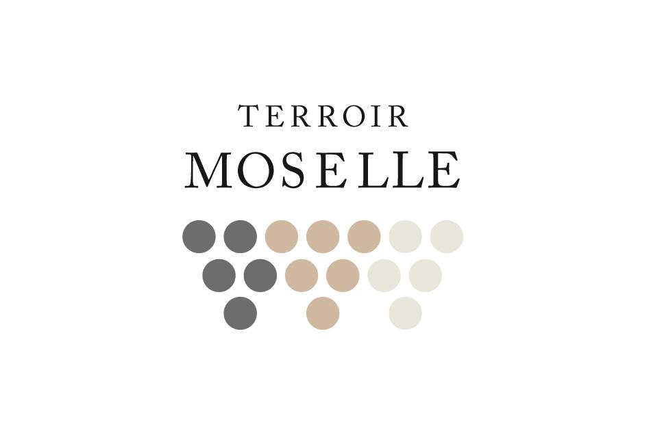 TM_V2_Logo