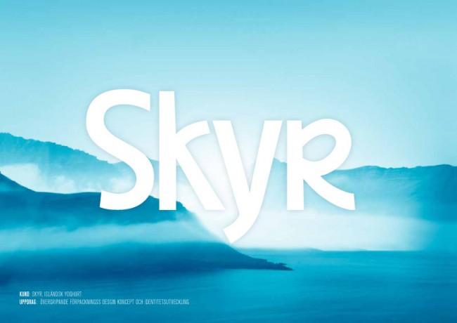 Skyr Logotype